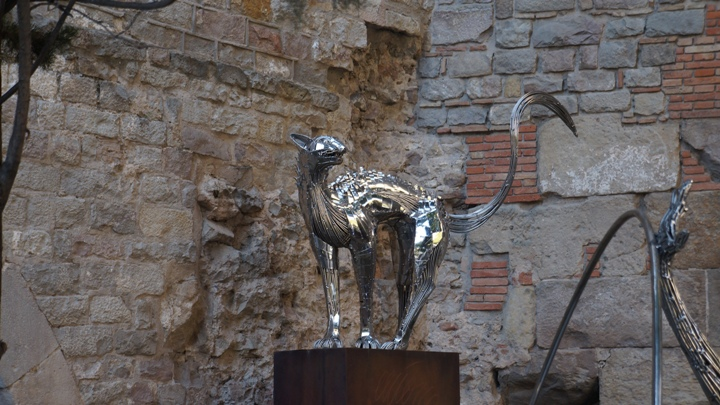 Рядом-с-кафедральным-собором-Барселоны