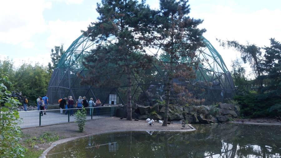 Сферы-для-птиц-зоопарк-Берлин